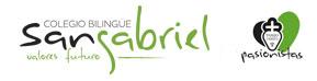 Colegio San Gabriel Logo