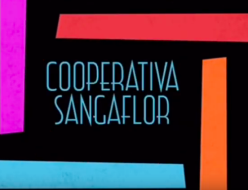 Sangaflor, cooperativa 5º y 6º de Primaria