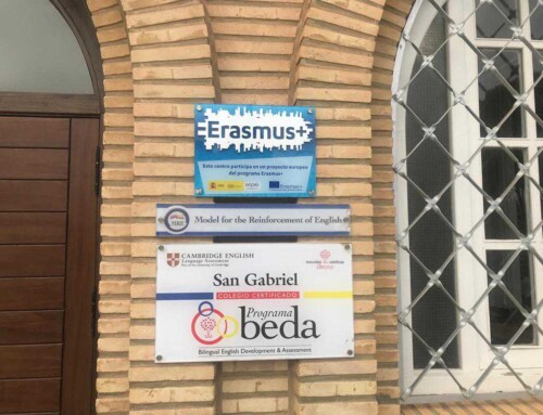 BEDA, un acompañante en el bilingüismo